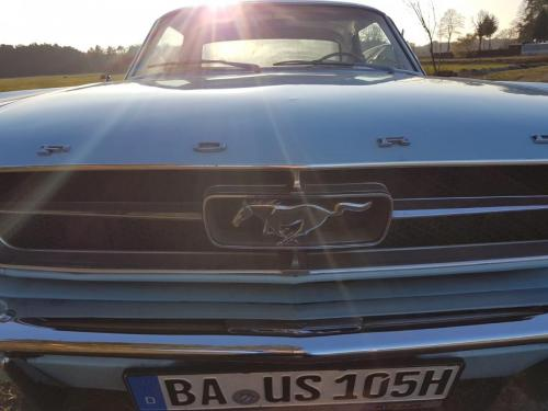 Mustang-Grill